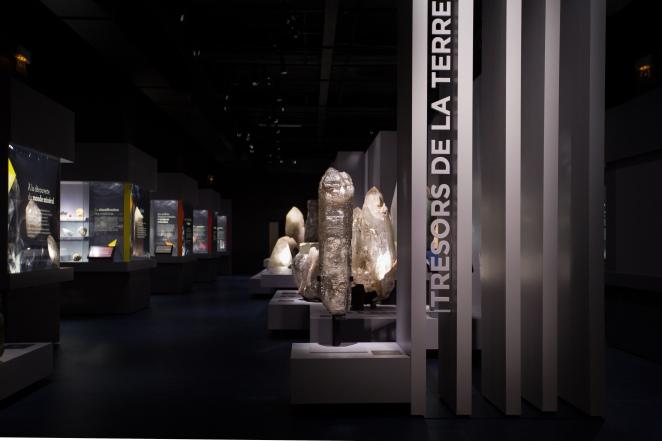 Expo Trésors de la Terre © MNHN - Augustin de Valence (2).jpg